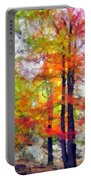 Autumnal Rainbow Portable Battery Charger