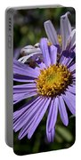 Autumn's Aster Portable Battery Charger