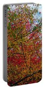 Autumns Beauty Portable Battery Charger
