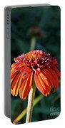 Autumn's Cone Flower Portable Battery Charger