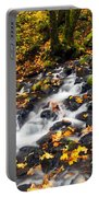 Autumn's Staircase Portable Battery Charger