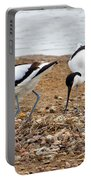 Avocets At Nest Portable Battery Charger