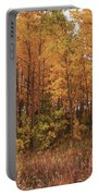 Awesome Aspens Portable Battery Charger