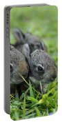 Baby Bunnies Portable Battery Charger