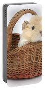 Baby Guinea Pig In A Wicker Basket Portable Battery Charger