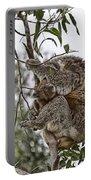 Baby Koala Portable Battery Charger