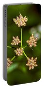 Baby Queen Anne's Lace Portable Battery Charger