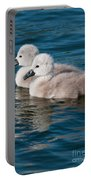 Baby Swans Portable Battery Charger