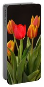 Baby Tulips Portable Battery Charger
