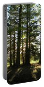 Back Lit Trees Portable Battery Charger