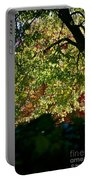 Backlit Autumn Portable Battery Charger