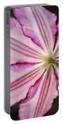Backlit Clematis Portable Battery Charger