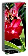 Backyard Red Beauty Portable Battery Charger
