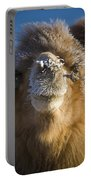 Bactrian Camel Camelus Bactrianus Portable Battery Charger