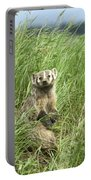 Badger Portable Battery Charger