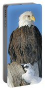 Bald Eagle Haliaeetus Leucocephalus Portable Battery Charger