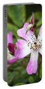 Ballerina Shrub Rose 3303 Portable Battery Charger