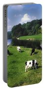 Ballyhooley, Co Cork, Ireland Friesian Portable Battery Charger