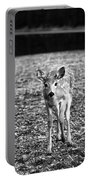 Bambi In Black And White Portable Battery Charger
