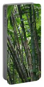Bamboo 2 Portable Battery Charger