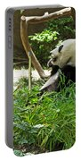 Bamboo Is Tasty Portable Battery Charger