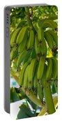 Bananas Portable Battery Charger