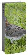 Bar-shouldered Dove Portable Battery Charger