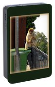 Barbary Ape Portable Battery Charger