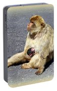 Barbary Ape Mother And Baby Portable Battery Charger