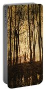 Fall Trees On A Lake Portable Battery Charger