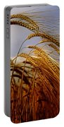 Barley, Co Meath, Ireland Portable Battery Charger