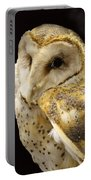 Barn Owl In A Dark Tree Portable Battery Charger