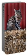 Barnyard Cat Portable Battery Charger