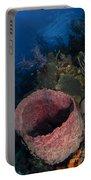 Barrel Sponge Seascape, Belize Portable Battery Charger
