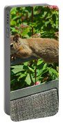 Basking Squirrel Portable Battery Charger