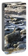 Beach Dweller Portable Battery Charger