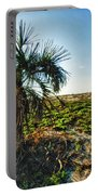 Beach Palm Morning Portable Battery Charger