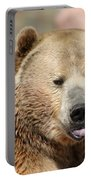 Bear Rasberry Portable Battery Charger