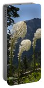 Beargrass Squaw Grass - 4 Portable Battery Charger