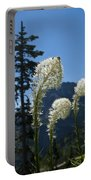 Beargrass Squaw Grass 2 Portable Battery Charger