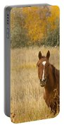 Beautiful Grazing Horse Portable Battery Charger