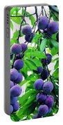 Beautiful Blue Plums On The Tree Portable Battery Charger