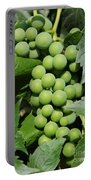 Beautiful Grapes Portable Battery Charger