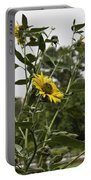 Beautiful Yellow Flower In A Garden Portable Battery Charger