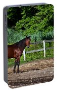Beauty Of A Horse Portable Battery Charger