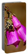 Bee Beetle Portable Battery Charger