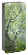 Beech At Craggy Portable Battery Charger