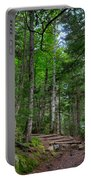 Beech Mountain Trail Acadia Portable Battery Charger