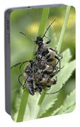 Beetle Mania Portable Battery Charger