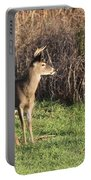 Being Aware - Deer Portable Battery Charger